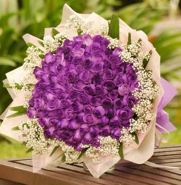 Sleek Simple Bingung Mau Kasih Pacar Bunga Mawar Warna Apa